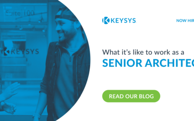 What It's Like to Work at KEYSYS as a Senior Architect